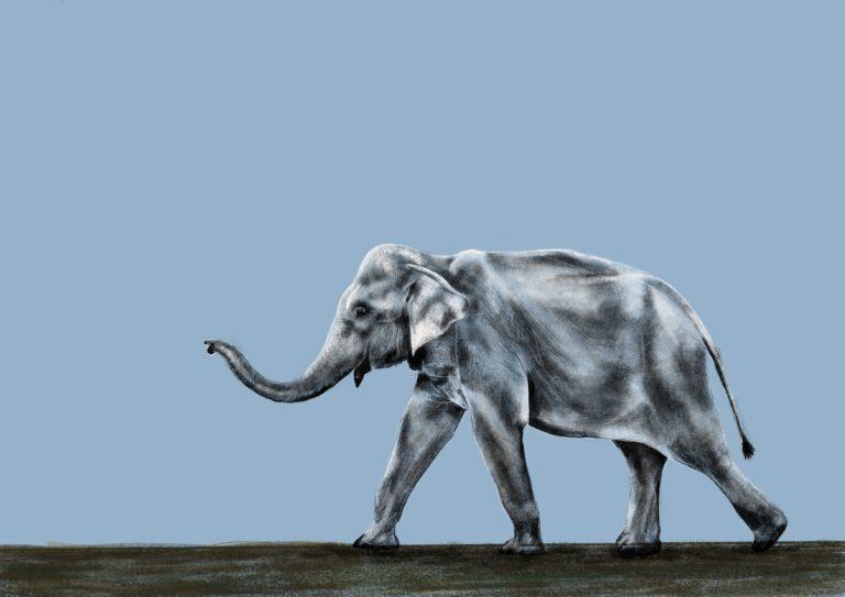 Tipps für die Datierung einer älteren Frau Elefantenjournal