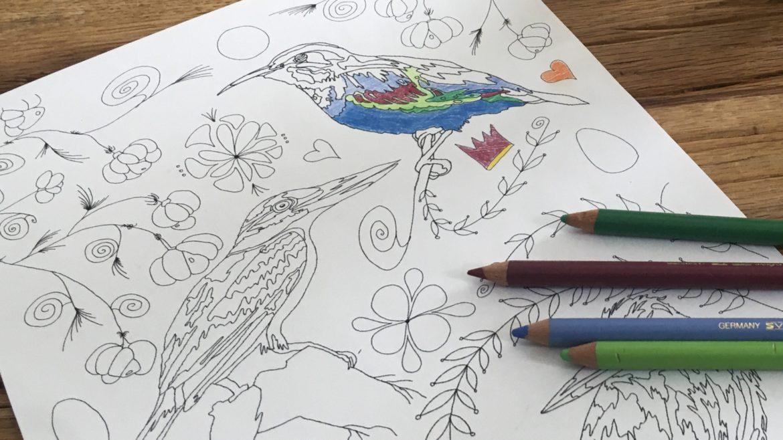 Ausmalbild Vögel